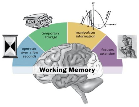 working-memory-2-1